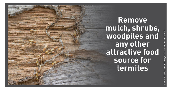 Remove-Mulch-Shrubs-Woodpiles-And-Any-Other-Food-Source-For-Termites