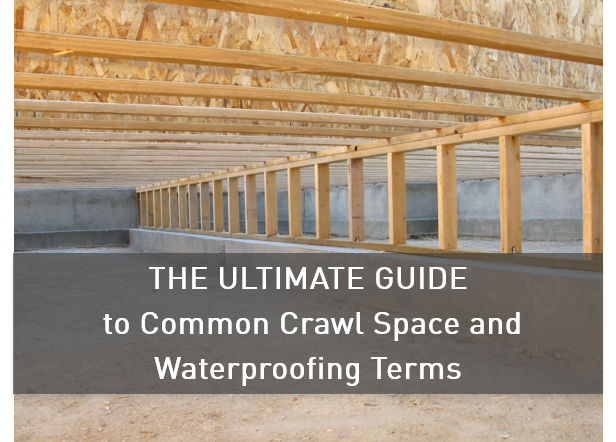 The_Ultimate_Guide_to_Common_Crawl_Space_and_Waterproofing_Terms.png