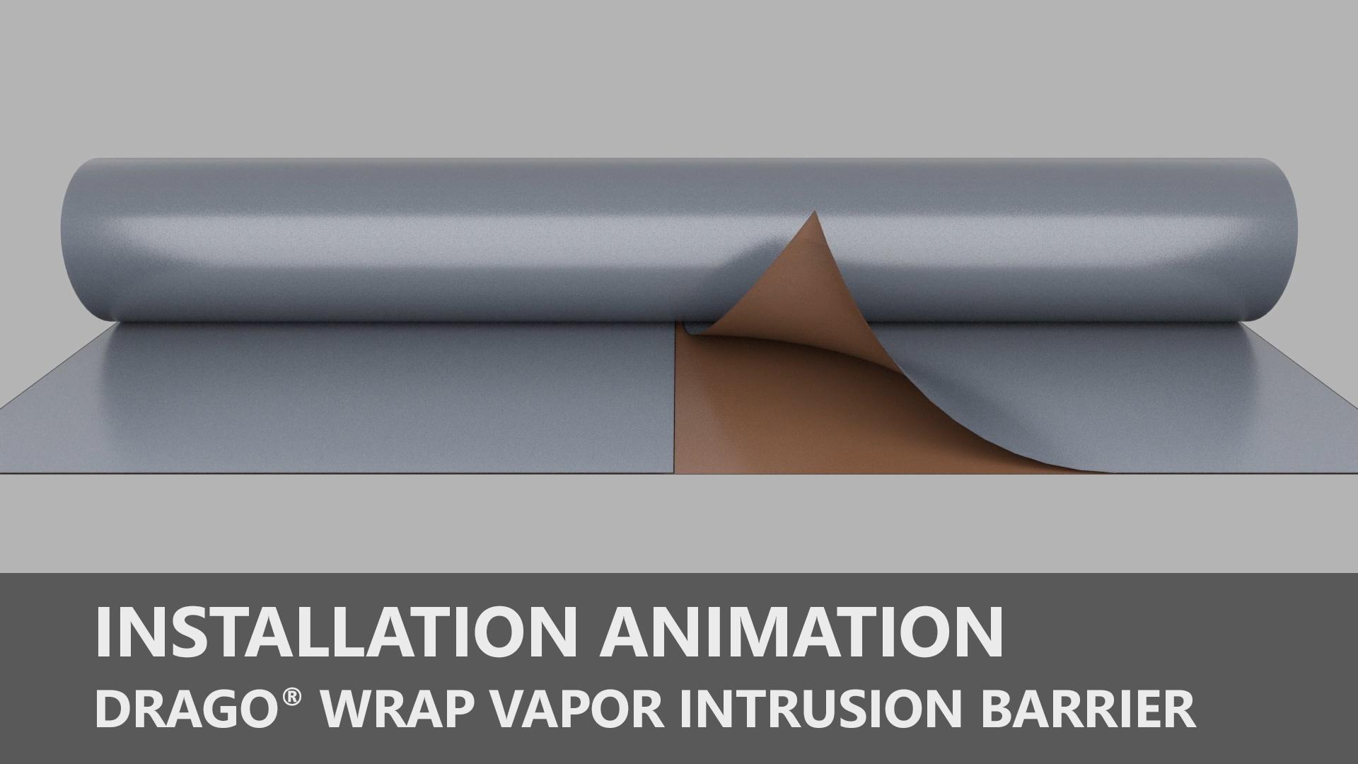 Thumbnail-Web-Drago-Animation