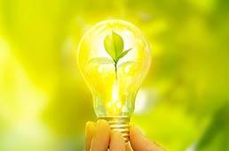 sustainability_image.jpg