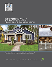 StegoCrawl-Brochure-Cover-182x234