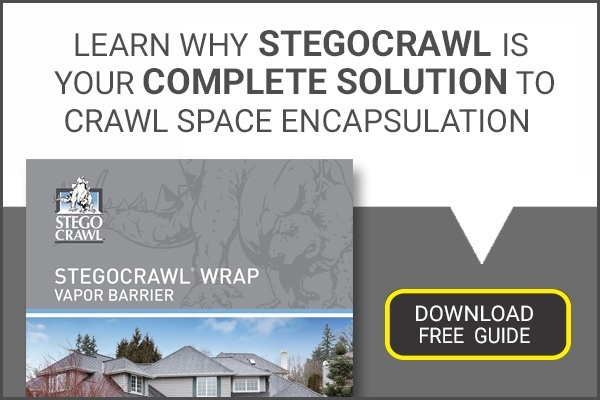 Why Does My Crawl Space Smell? Troubleshooting the Source of